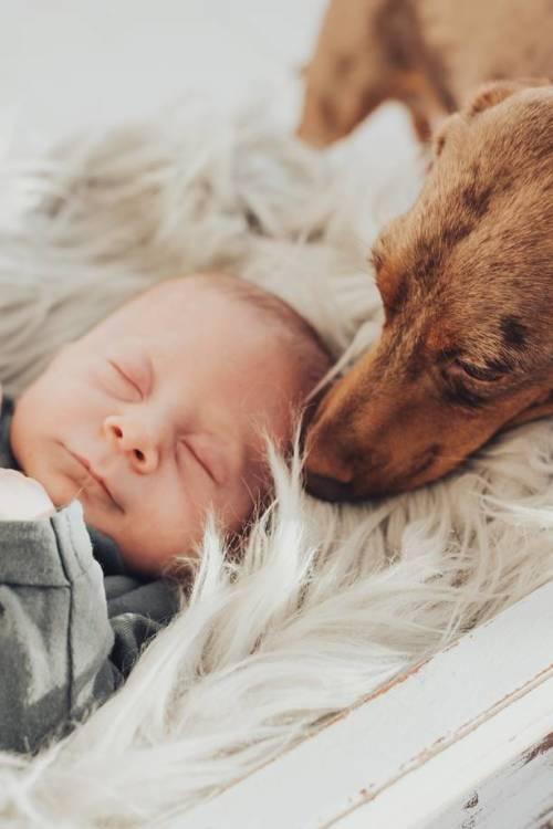 neugeborenenfotos bremen 05 500x750 - Liebesgeschichten