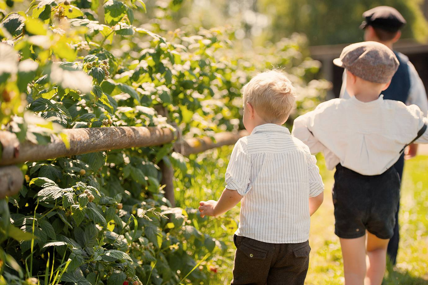 Familienfotos auf dem Bauernhof